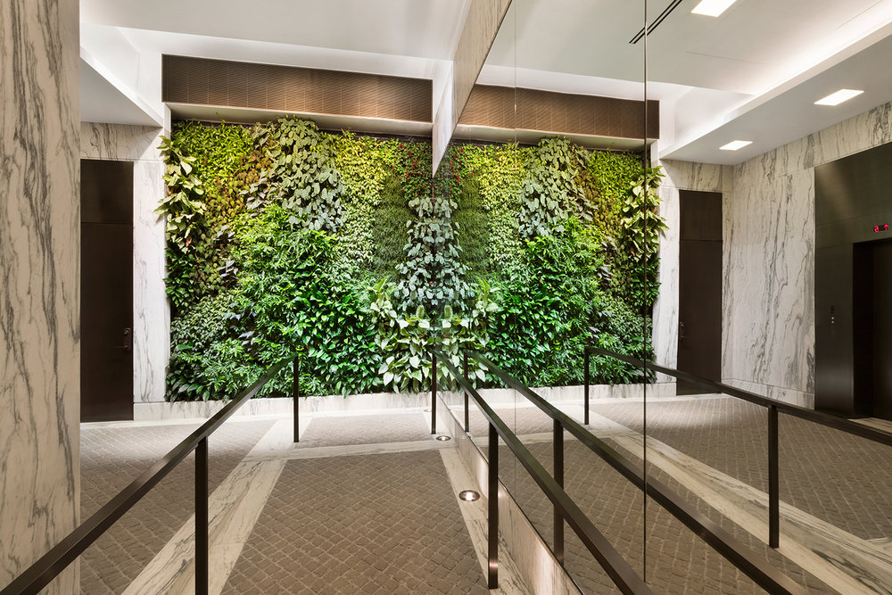 Front perspective of a living green wall beside large mirrors inside the lobby of a luxury residential building. MEP designed by 2LS Consulting Engineering.