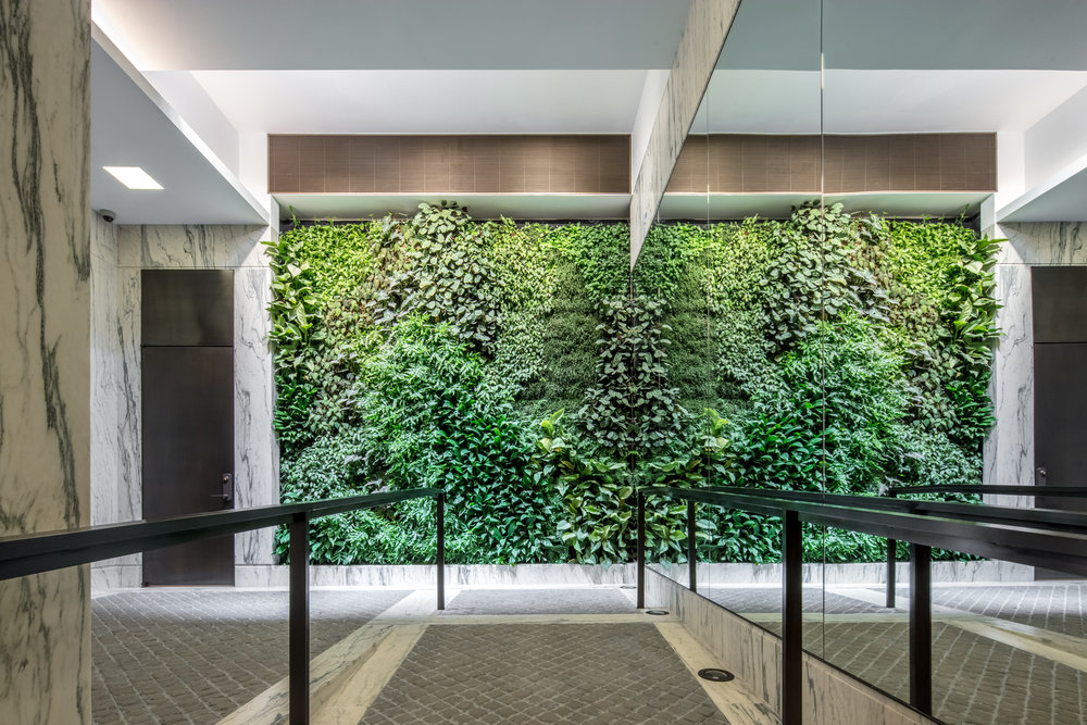 Front view of a brightly lit living green wall with tiled and marble flooring and a mirror facing the elevators. MEP provided by 2LS Consulting Engineering.