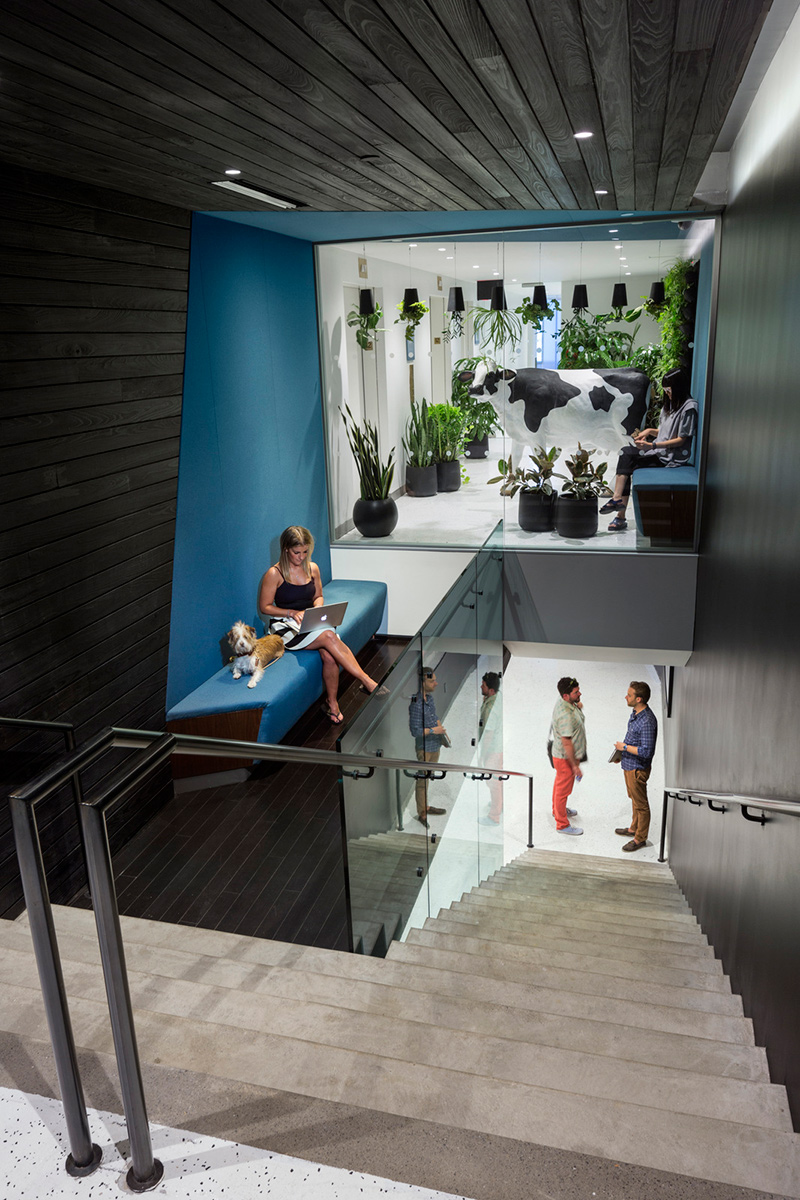 A woman working on her laptop with her dog as they sit on a landing beside a staircase where two men are talking. MEP designed by 2L Engineering.