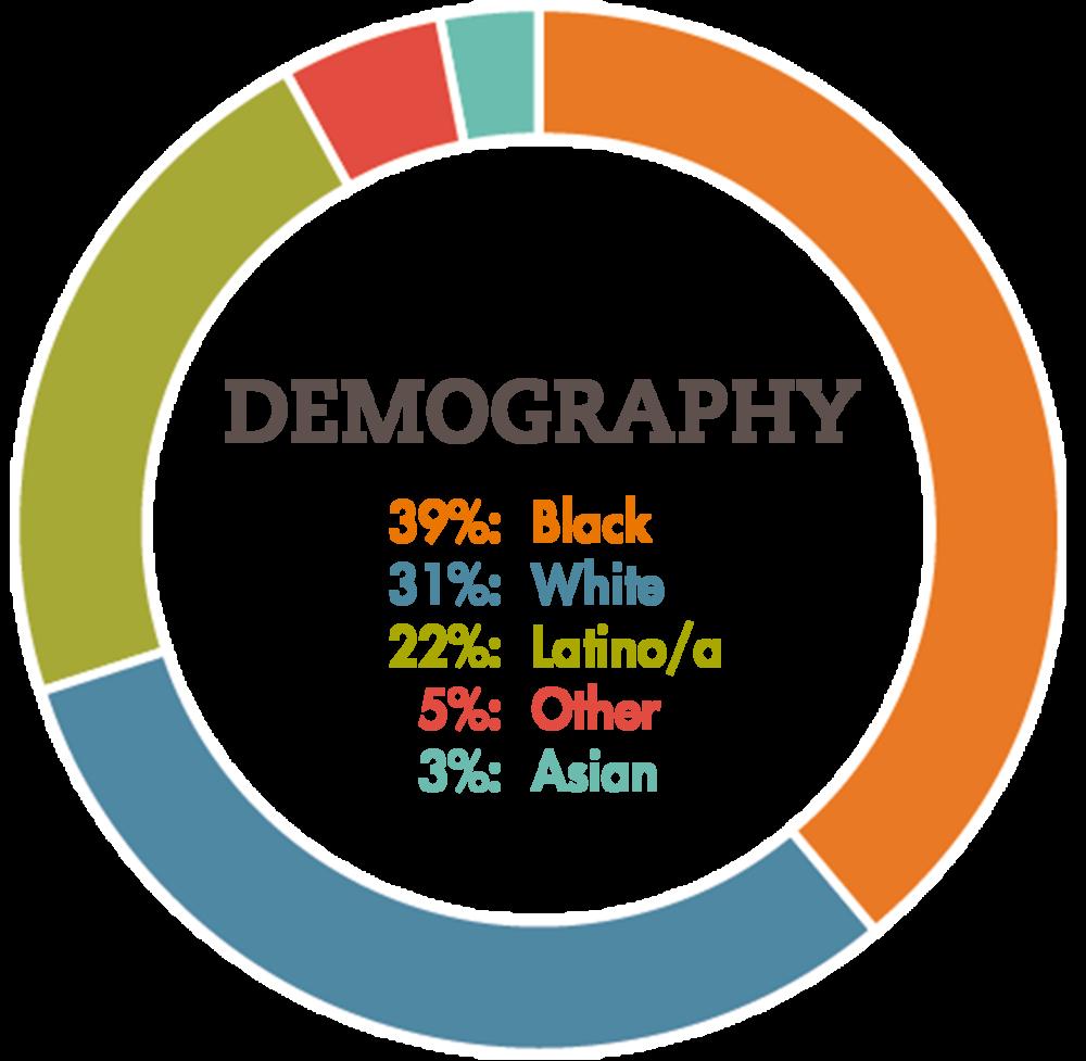 Demography Chart FINAL.png