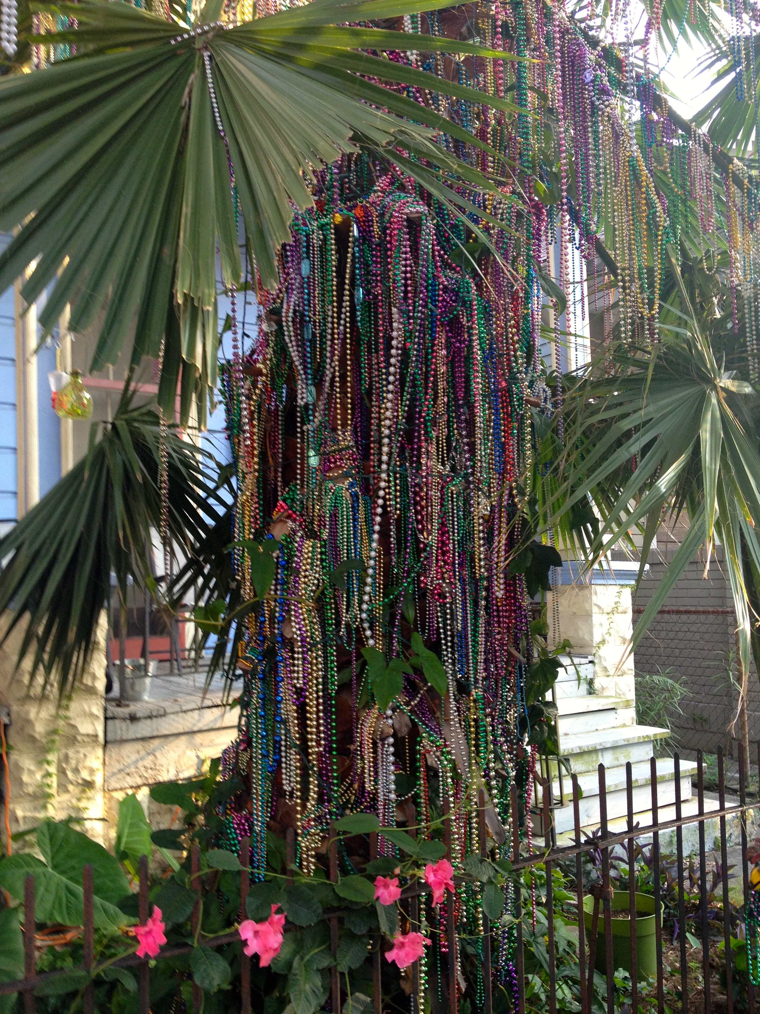Colorful accents on an early morning run in New Orleans