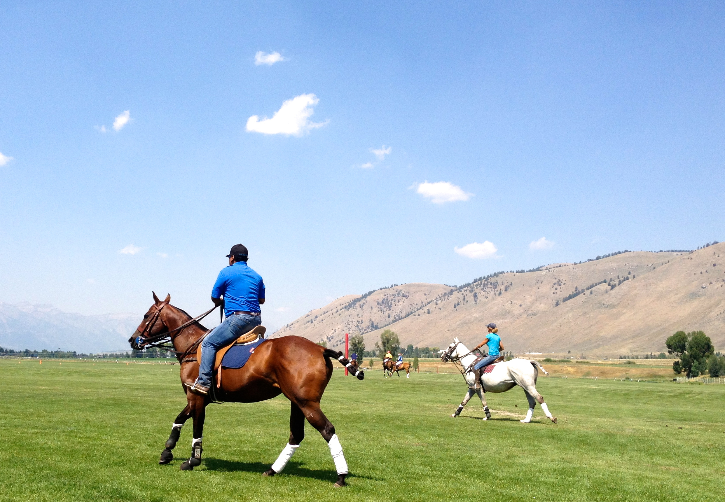 Teton Polo - a whole other world (and worldly backdrop)