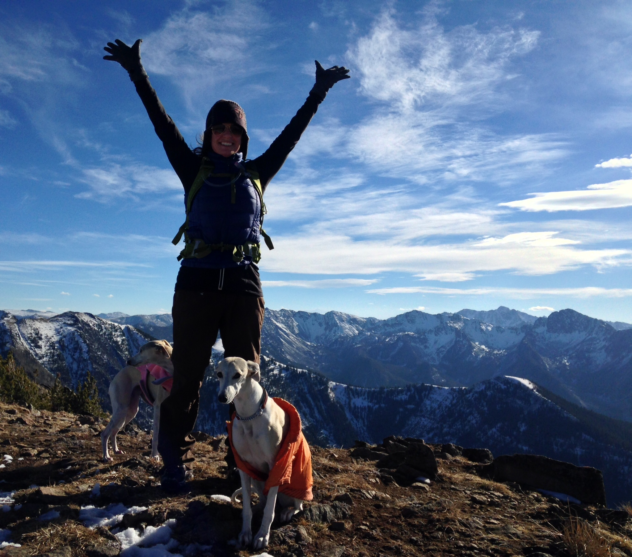Stephanie on the summit with her little whippets.