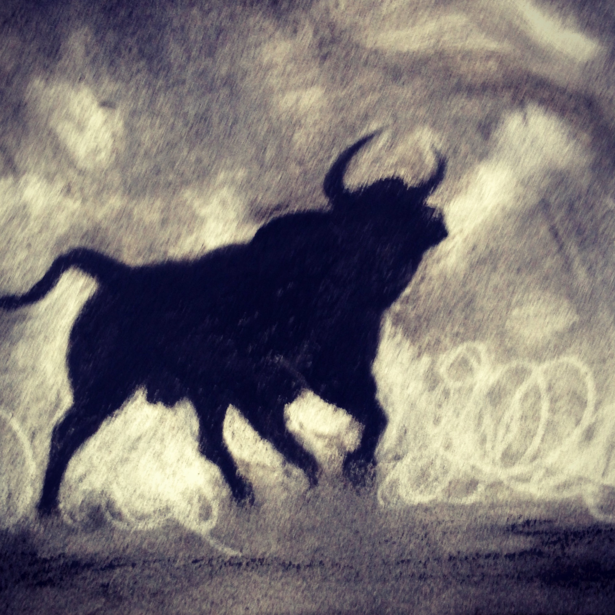 A moody bull for my bull-fighting boyfriend...