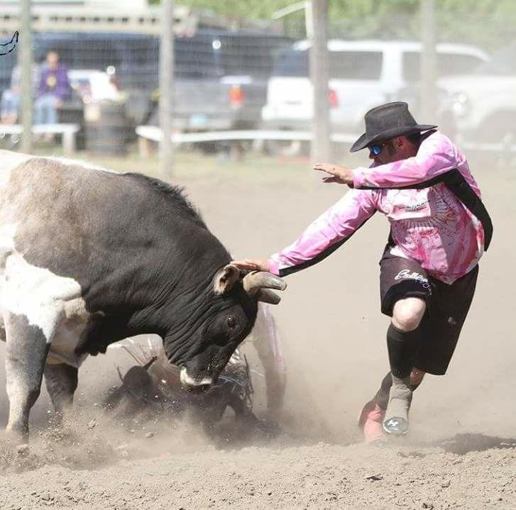 Raymond bulls