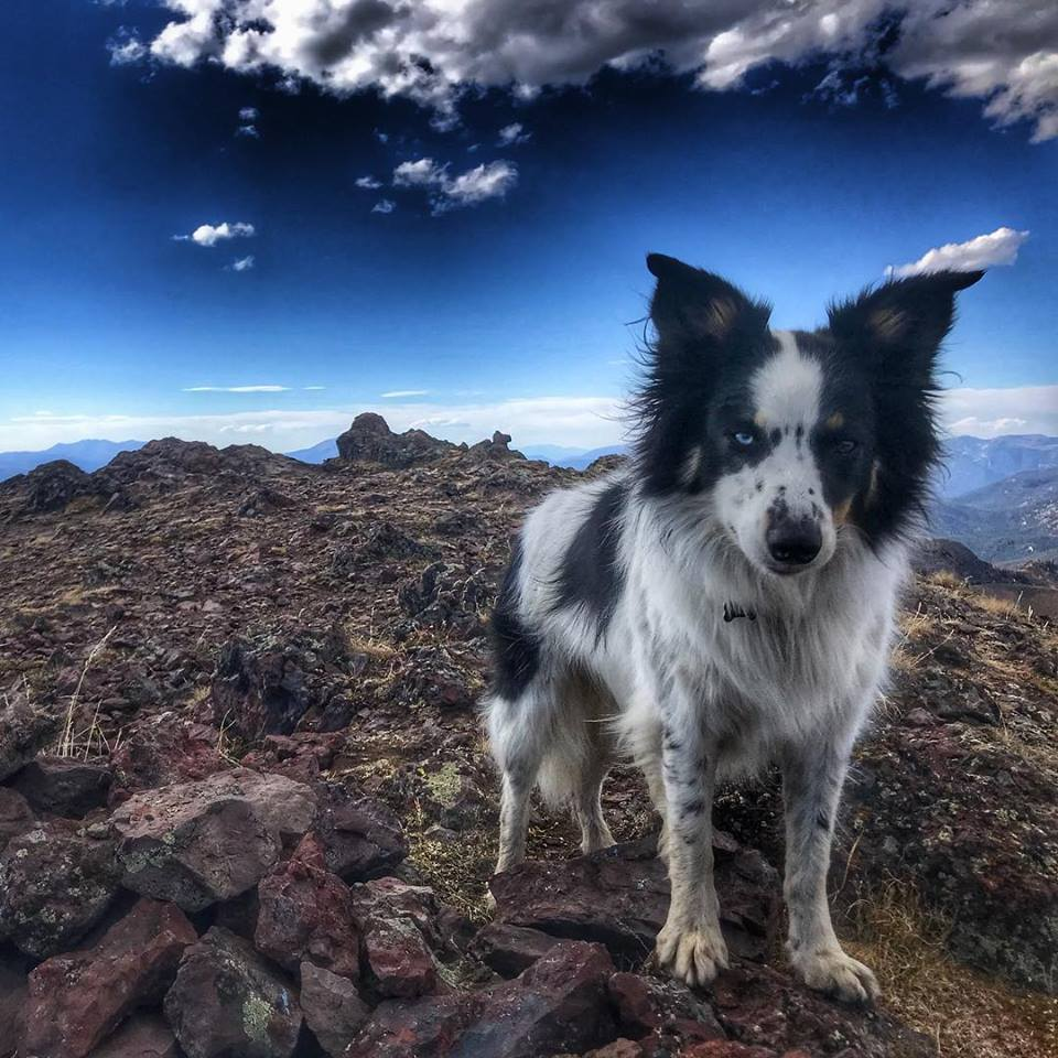 Tala looks either concerned, contemplative or protective on Ramshorn Peak