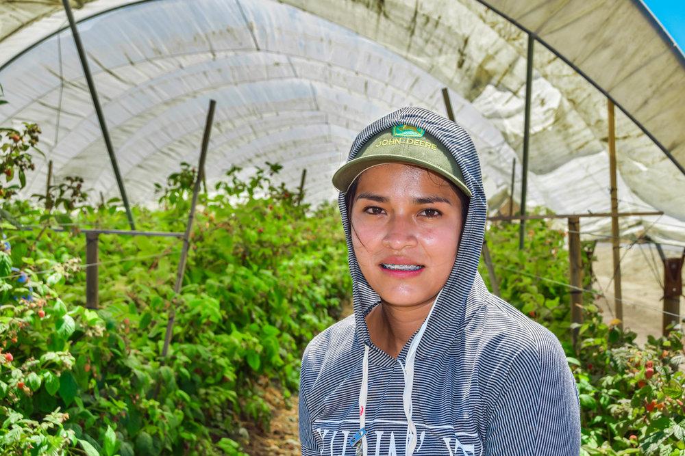 agricultural worker.jpg