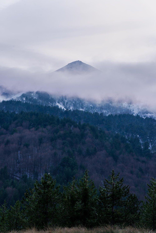 mountain-peak-snow-winter-cold-forest-nature-landscape.jpg