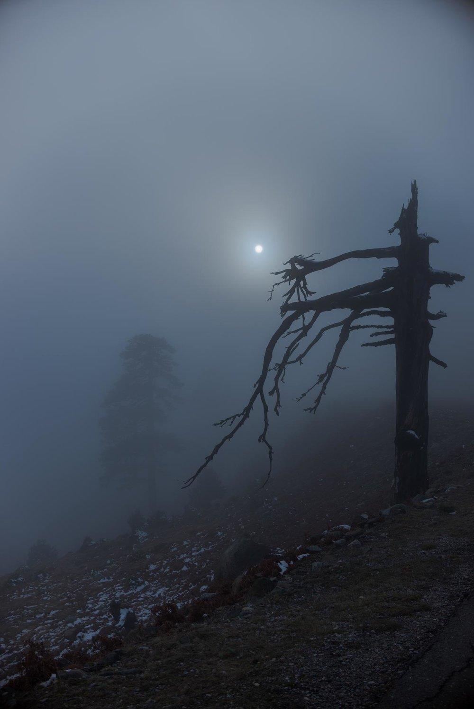 fog-landscape-mist-greece.jpg