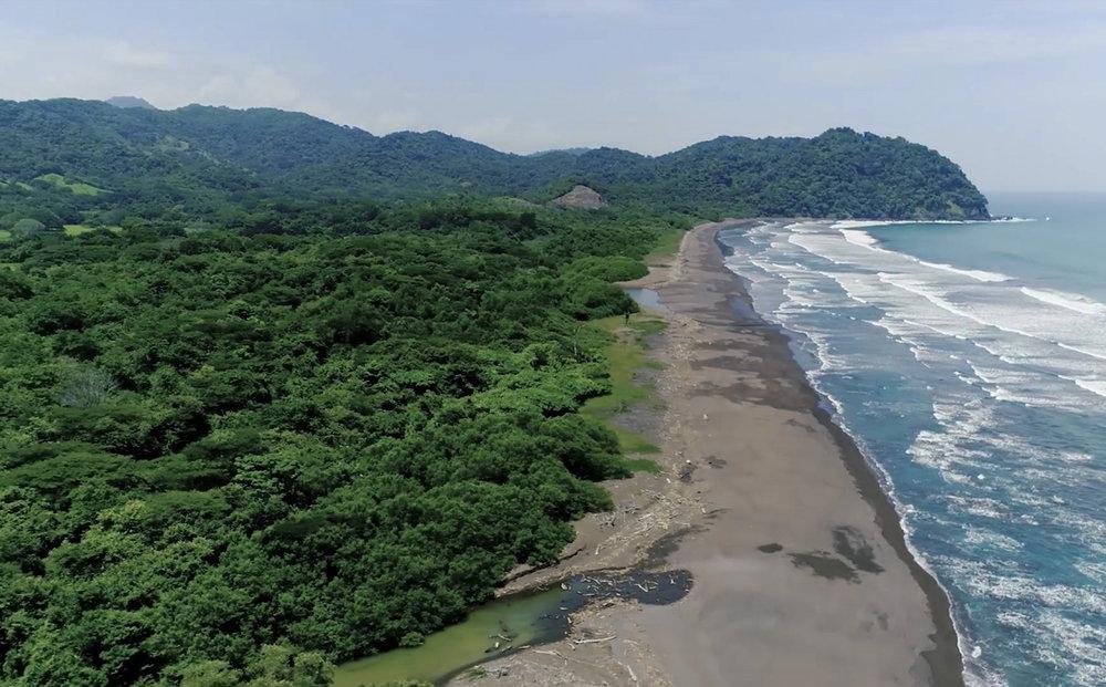 Lush jungle forest to pristine beaches