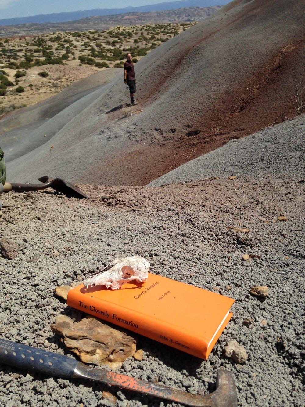 Fieldwork in Wyoming