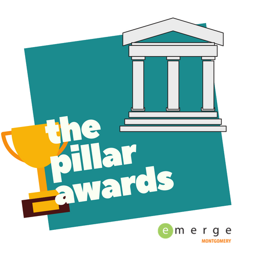 the pillar awards emerge.png