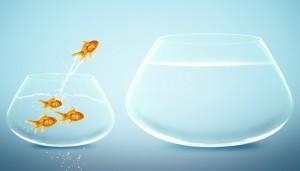 Taking a big leap
