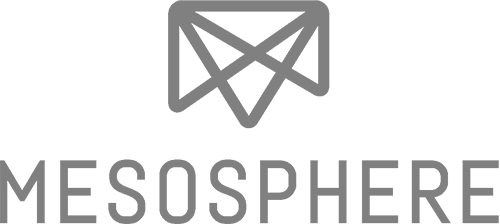logo--mesosphere--monochrome--inverse--vertical-B170evZWwz.png