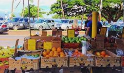 vegan farmers market maui