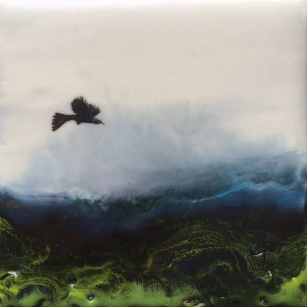"""Uncommon Grackle""   4x4"" framed  encaustic mixed media on board  $100 CAD  2019"