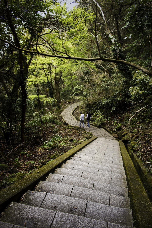school trip path.jpg