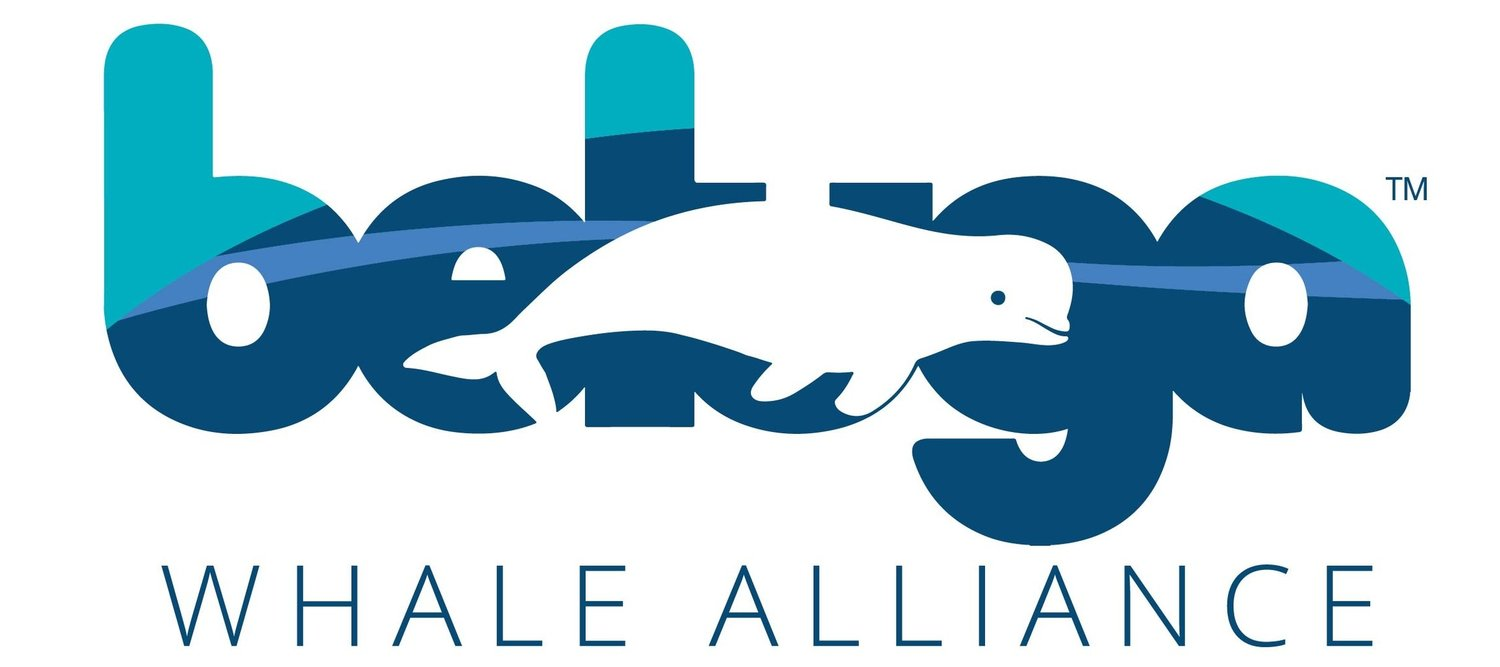 Beluga Whale Alliance
