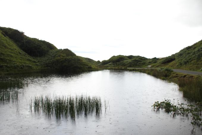 Rainwater Reflection Sky PritishSocial.jpg