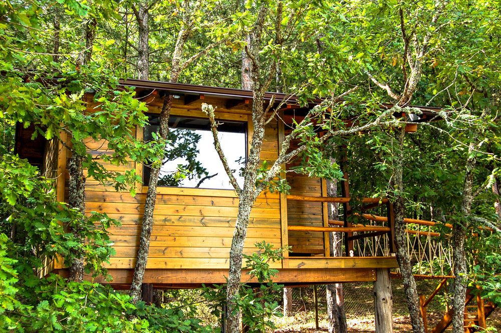 Treehouse exterior