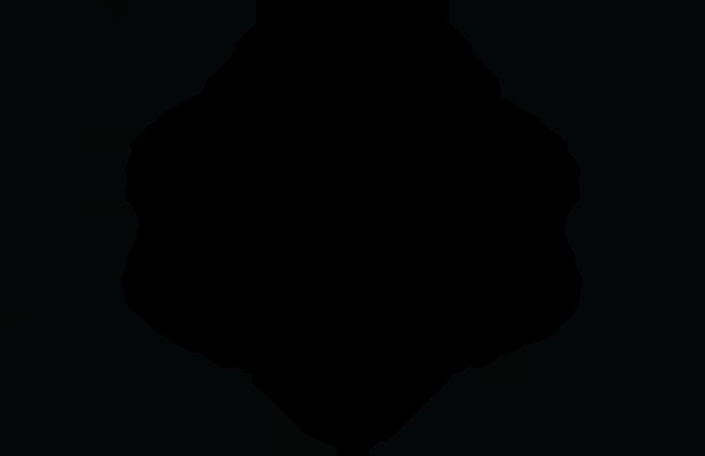4-3-laurels_0016_FINALIST---Kodak-Film-School-Competition---2017.png