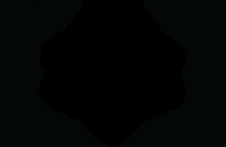 4-3-laurels_0005_FINALIST---Kodak-Film-School-Competition---2017.png