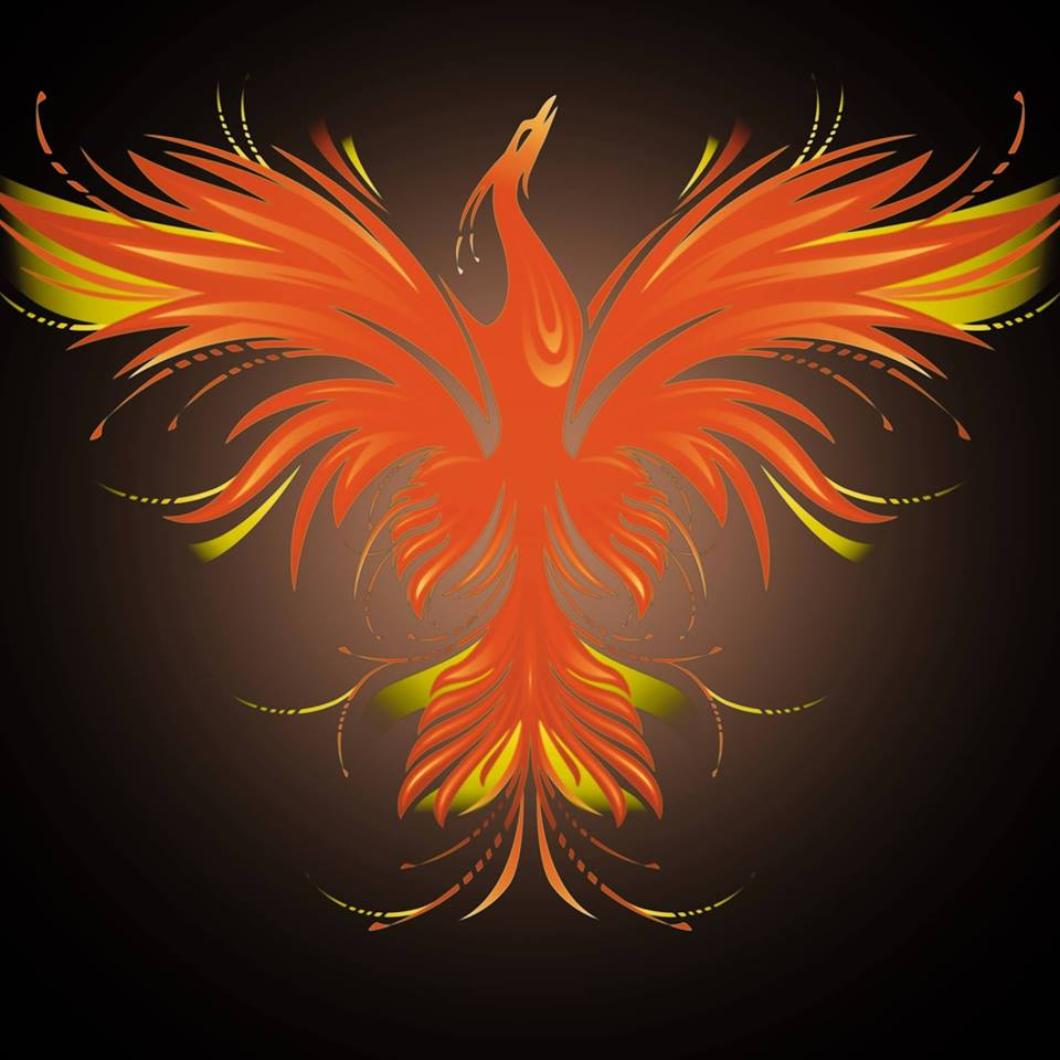 Phoenix Fiction Writers - Social media manager