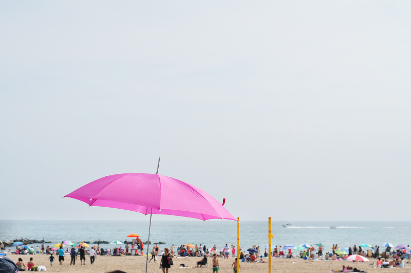DSC_0907_beach_CC_800.jpg