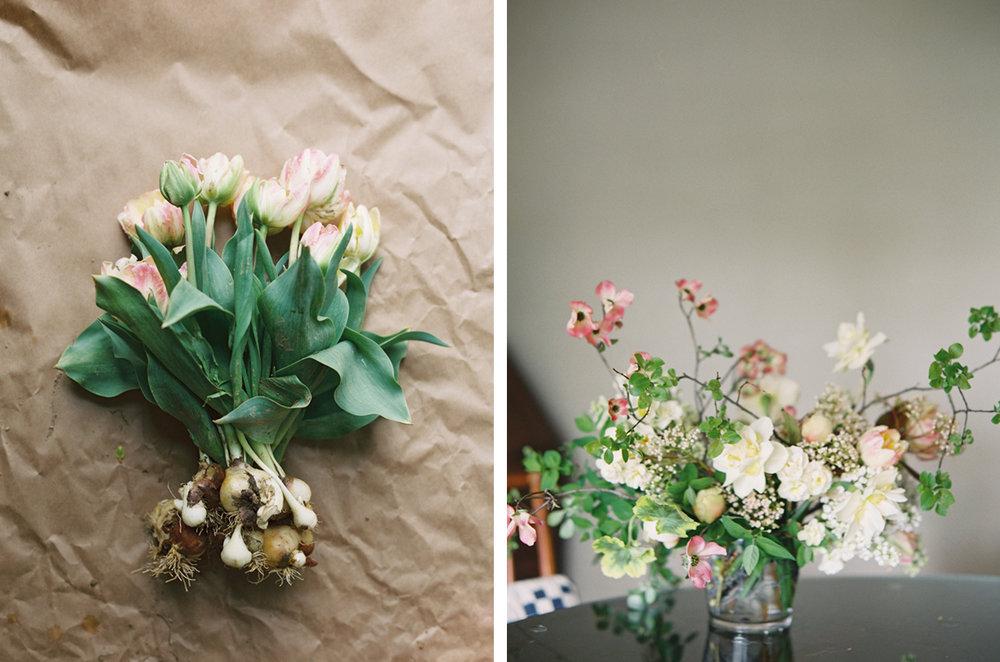 cristina-lozito-photography-flowers-2.jpg