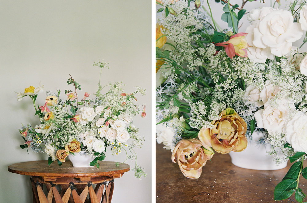 cristina-lozito-photography-flowers-3.jpg