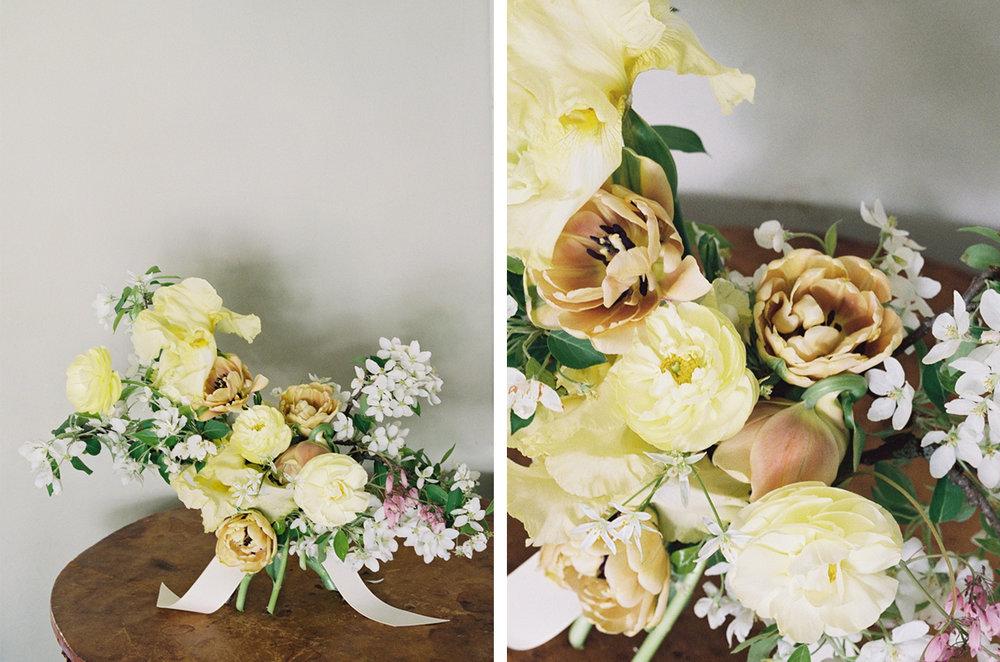 cristina-lozito-photography-flowers-6.jpg