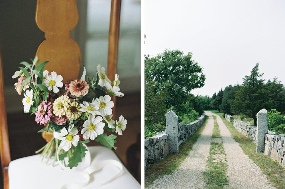 cristina-lozito-photography-flowers-7.jpg