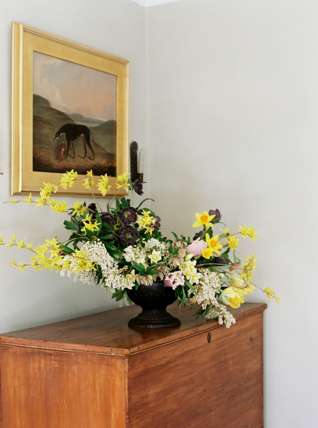cristina-lozito-photography-flowers-13.jpg