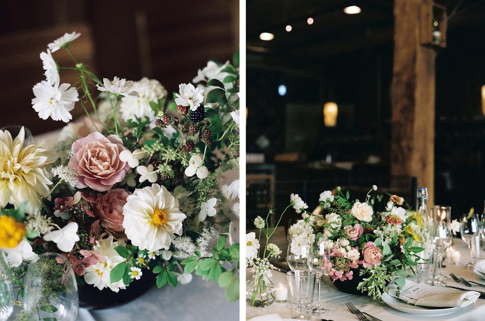 cristina-lozito-photography-flowers-15.jpg