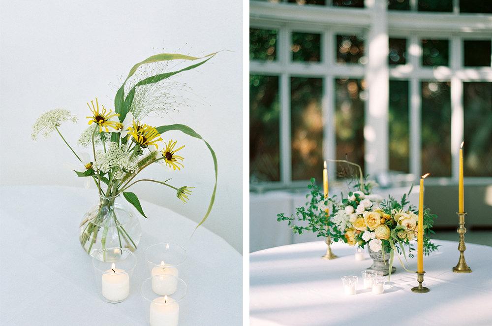 cristina-lozito-photography-flowers-25.jpg