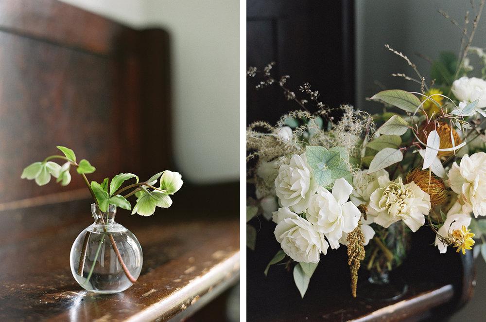 cristina-lozito-photography-flowers-27.jpg