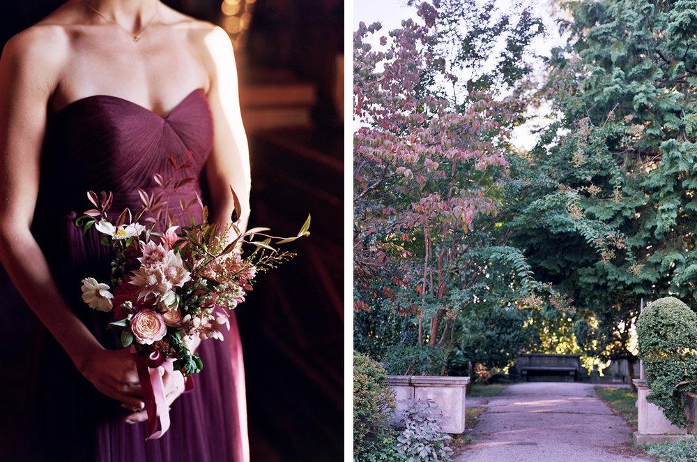 cristina-lozito-photography-flowers-29.jpg