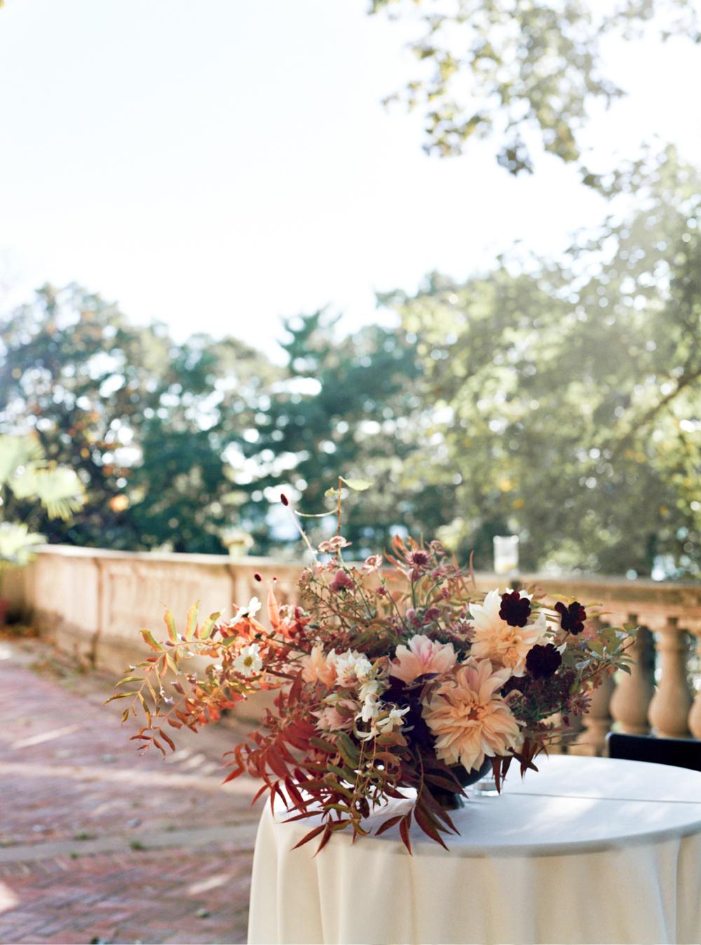 cristina-lozito-photography-flowers-30.jpg
