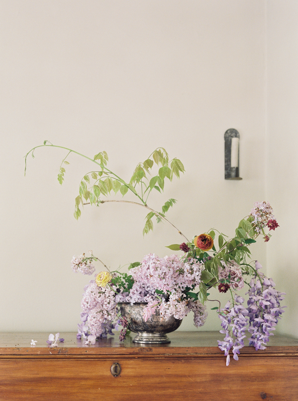 cristina-lozito-photography-flowers-36.jpg
