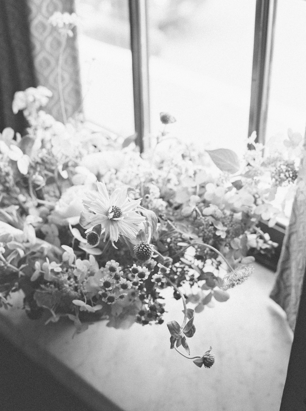 cristina-lozito-photography-flowers-40.jpg