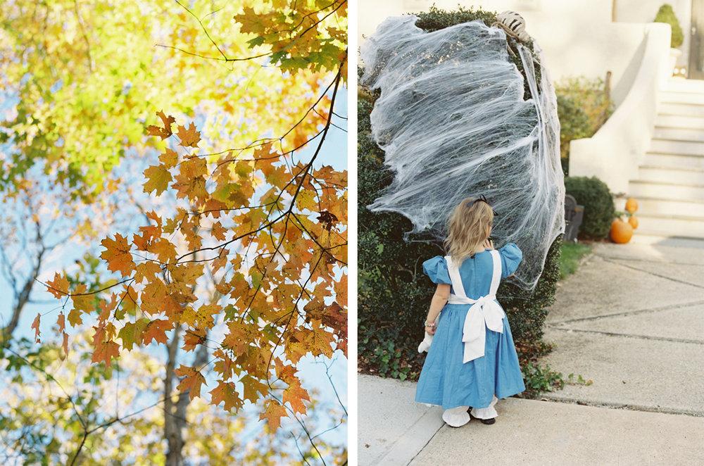 cristina-lozito-photography-halloween-5.jpg