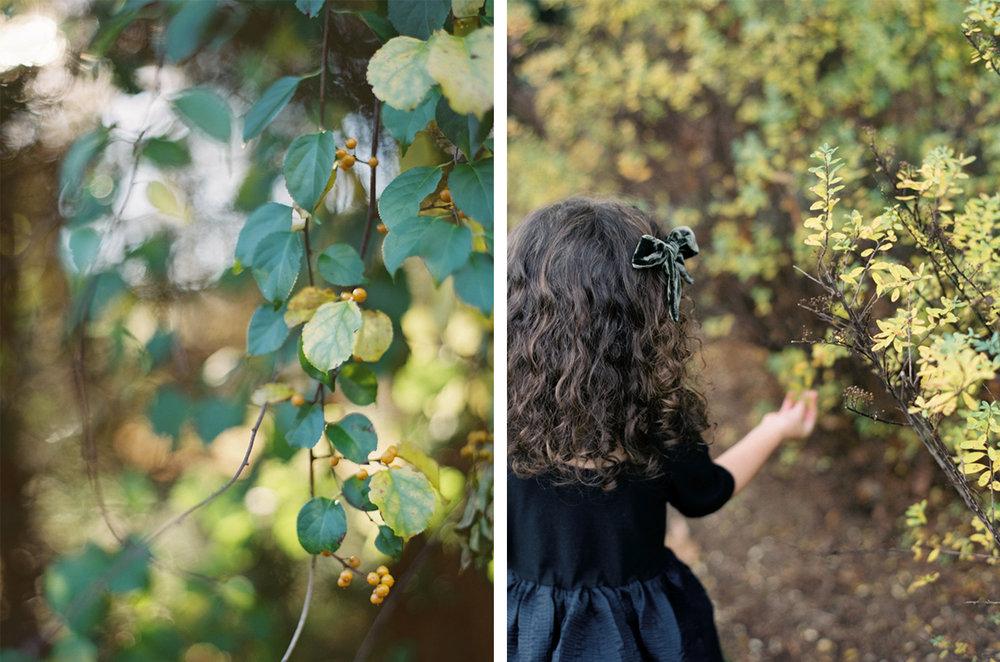 cristina-lozito-photography-halloween-7.jpg