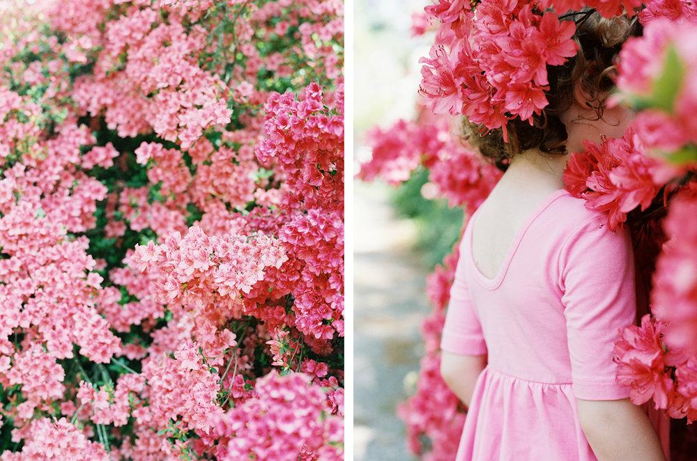 cristina-lozito-photography-families-2.jpg