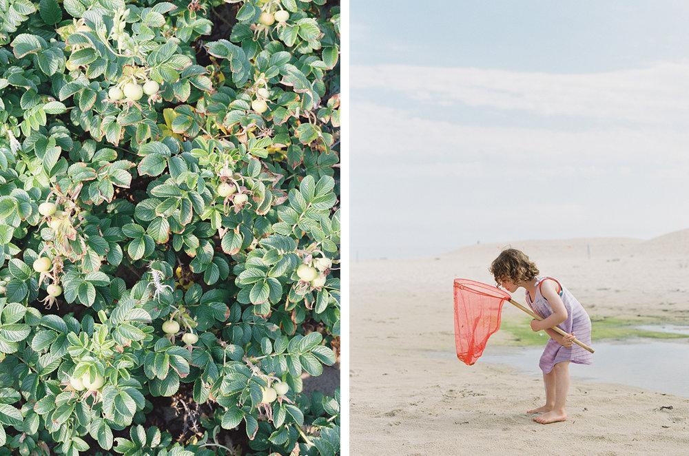 cristina-lozito-photography-families-9.jpg