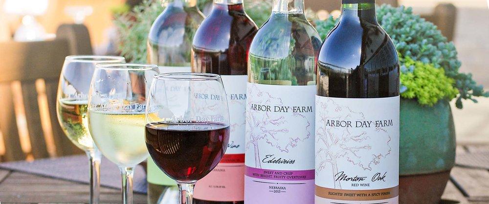 hero-wine-lineup.jpg