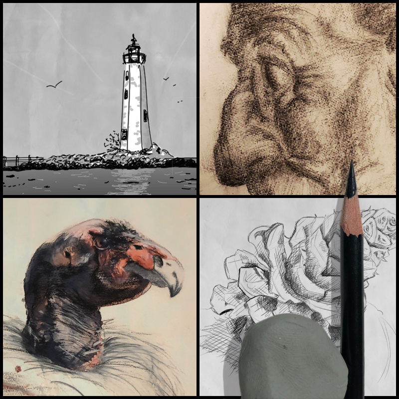 The Drawing Course:Level 1 -