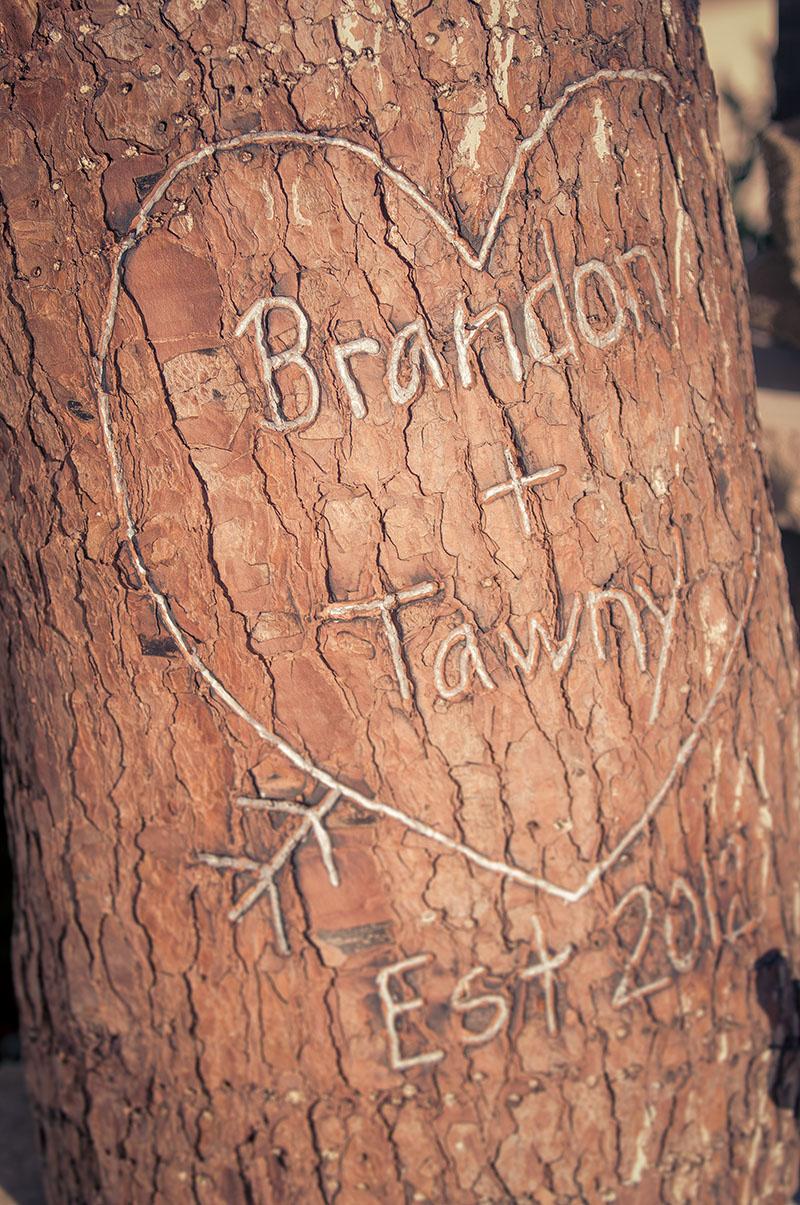 TawnyandBrandon16.jpg