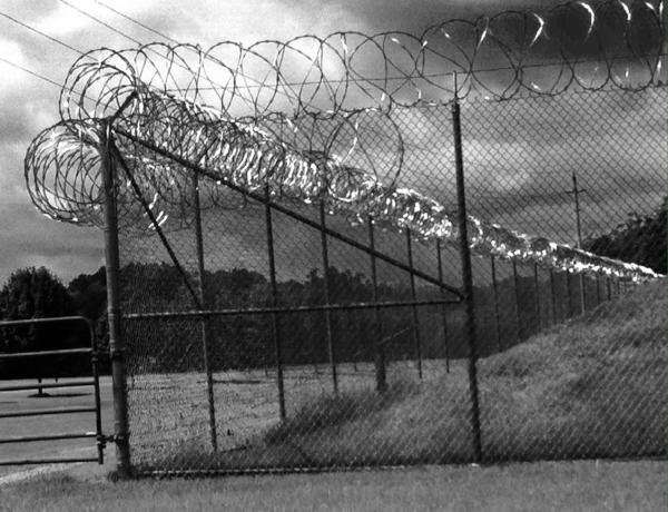 prisonconcertina.JPG