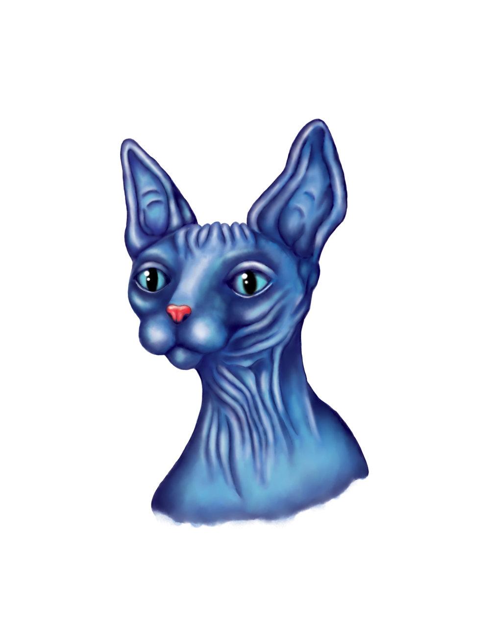 kittyRGB.jpg