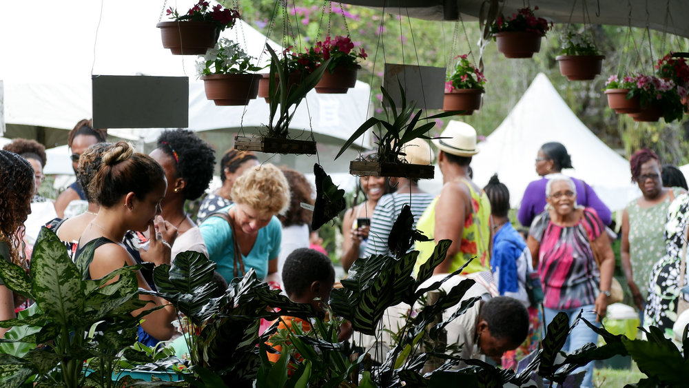 annual flower show trinidad 2018 (2) .jpg